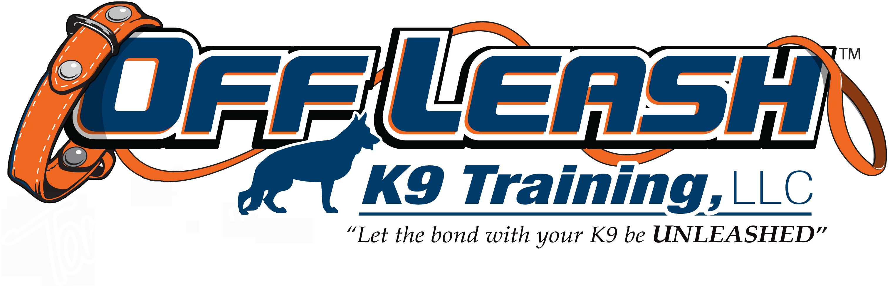 Arlington Offleash K9 Dog Training
